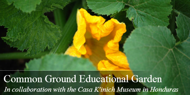 Common Ground Educational Garden